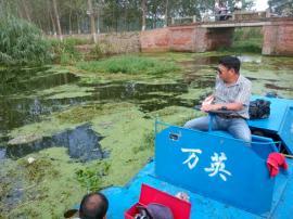 河道除草船 景区除草船 多功能除草船 小型除草船 水面除草船