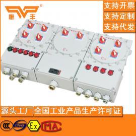 BXM53防爆照明配电箱 防爆照明配电箱制造厂