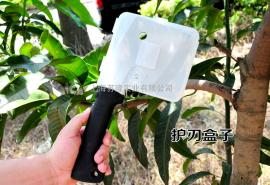 德狮宝AX-9 AX-12手斧头砍果树枝叶子园林多功能消防斧子