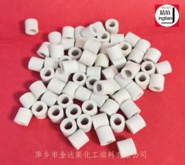 陶瓷拉西环 陶瓷拉西环填料 烧碱/糖厂用陶瓷环 精填牌金达莱