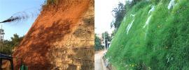 矿山修复绿化喷坡机客土8立方喷草机
