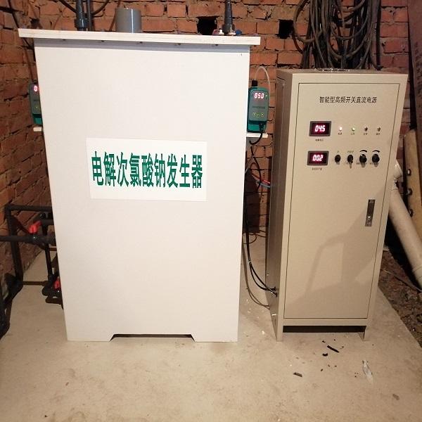 农村安全饮水自来水厂游泳池水自备井水消毒设备二氧化氯发生器