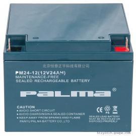 PALMA八马铅酸蓄电池PM65-12阀控式密封12V65AH