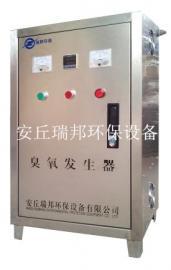 热销臭氧消毒机 瑞邦臭氧杀菌发生器 口碑产品