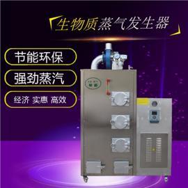 节能新能源生物质环保蒸汽发生器免检锅炉