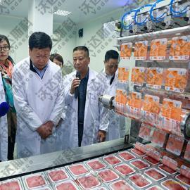 血豆腐加工设备 |全套血豆腐生产线