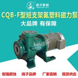 CQB-F型衬氟磁力泵耐腐蚀磁力泵化工磁力泵