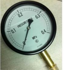 AC10-131/-30-0KPA日本长野NKS压力表