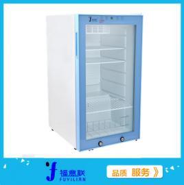 FYL-YS-100L型恒温箱