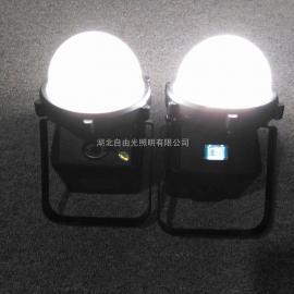 SD7218-12W轻便式装卸灯