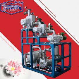 新安江耐腐蚀电动立式JZJ2B罗茨液环真空机组