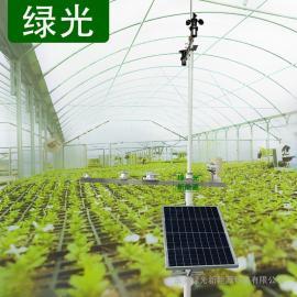 TWS-WS 蔬菜日光温室大棚小气候观测站