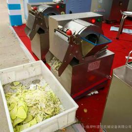 食堂饭店小型薯类切丝机 土豆切片机红薯切片机