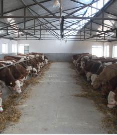 农业畜牧养殖除臭消毒喷雾机