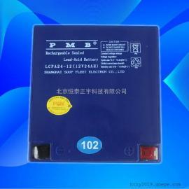 PMB蓄电池LCPA200-12 12V200AH后备网络电源