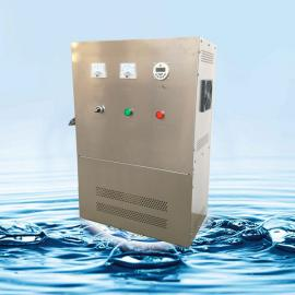 杀菌灭藻臭氧发生器不锈钢水箱自洁消毒器 水处理设备