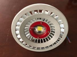 30W吸壁式防爆灯 LED光源 ExdIICT6