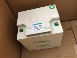 荷贝克蓄电池power.com XC 123000 12V99AH医疗设备
