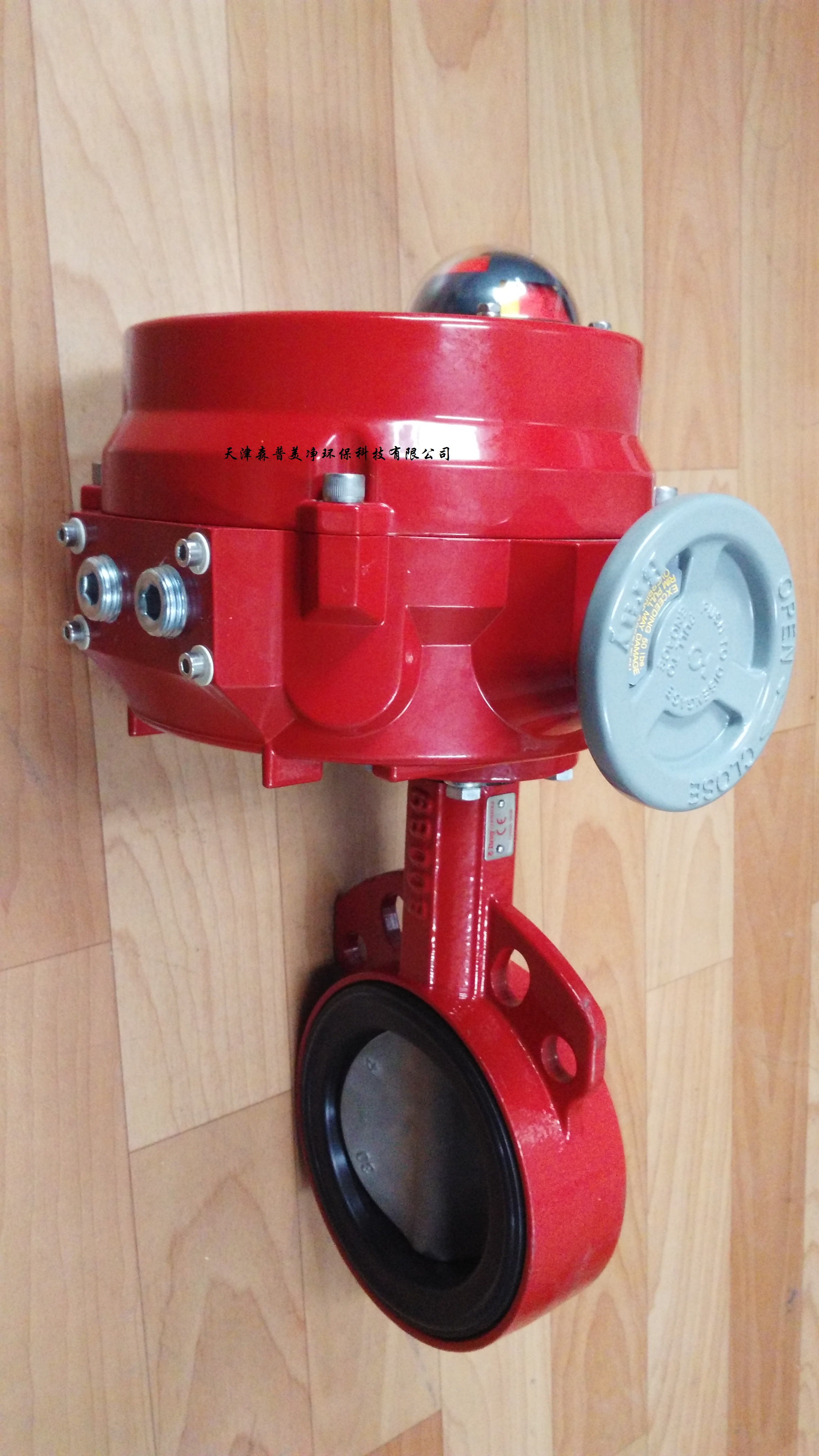 美国博雷Bray电动执行器70-C121-113D4-536/G