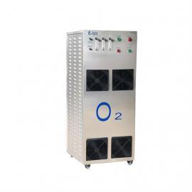 40L制氧机 纯氧机 小型工业氧气机 水产养殖 空间增氧 93%高浓度