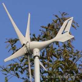 300W风力发电机 小型风力发电机-英飞风力