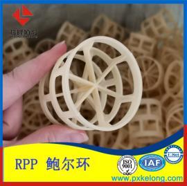 含30%玻璃纤维增强鲍尔环耐高温RPP塑料鲍尔环填料