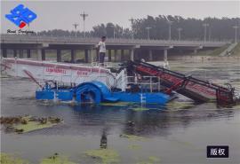 水葫芦打捞船 水面垃圾清理船 小型割草船