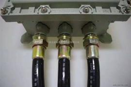 BNG-DN15*500 PVC橡胶防爆管/化工厂防爆电源插座箱连接管