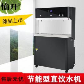 愉升温热饮水机大容量节能开水器智能不锈钢直饮水机