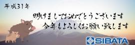 日本SIBATA柴田科学CANA-0010数显照度计