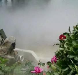 餐厅咖啡馆雾森造雾造景系统