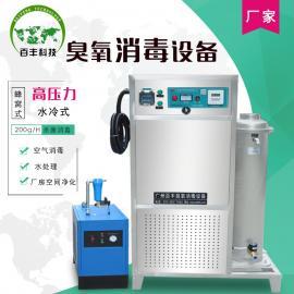 百丰饮用水使用臭氧消毒发生器200g-高压力蜂窝式臭氧发生器