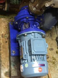 易威奇MDM25-1602EKKF037J-E2 日本IWAKI易威奇化工磁力泵
