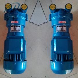 2BV2061水环真空泵