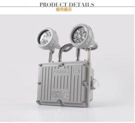 防爆指示灯标示灯消防双头应急灯GCD803-YJ
