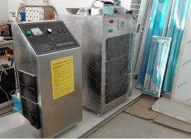 便携式臭氧消毒机 小型便携式臭氧机定制