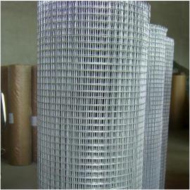改拔丝电焊网A圈玉米电焊网A热镀锌电焊网实体厂