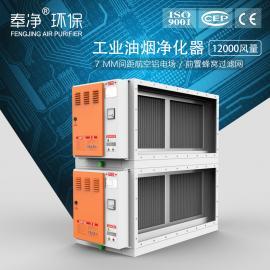 油烟净化设备 商用油烟净化器 工业食堂油烟净化GX系列