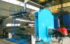 4吨蒸汽燃油燃气两用型锅炉 环保实用