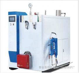 定制生产燃气模块炉 节能天然气模块炉 采暖取暖模块炉