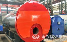 造纸厂4吨蒸汽锅炉改造 天然气蒸汽锅炉