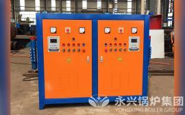 100公斤电热蒸发器 LDR型电热蒸汽发生器