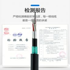 GYTZA53-24B1.3 室外铁路阻燃直埋光缆重铠装 GYTZA53光缆24芯