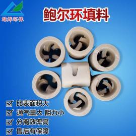 供应 废气鲍尔环填料 陶瓷鲍尔环 通量大 阻力小