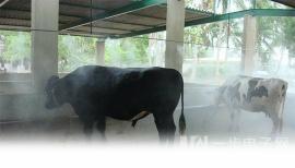 牛场专业自动喷雾消毒机器