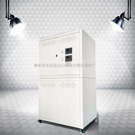 全预混燃气锅炉 燃气模块炉 燃气常压锅炉