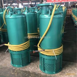 矿用立式防爆潜水泵加油站BQS3kw高扬程防爆排污泵MA认证