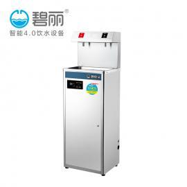 饮水机 碧丽 JO-2D /两嘴/学校/医院/车站/开水器/直饮水设备