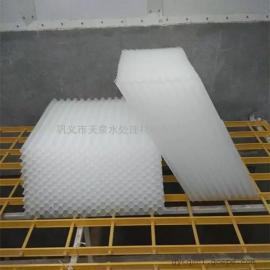 *生产蜂窝斜管的厂商―农村污水处理项目用填料