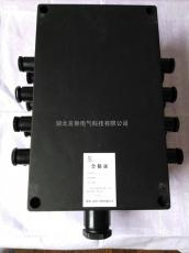 FXJ-S防水防腐防�m接�箱